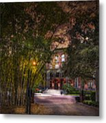 The Bamboo Path Metal Print