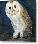 The Barn Owl Metal Print