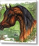 The Bay Arabian Horse 1 Metal Print