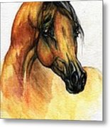 The Bay Arabian Horse 14 Metal Print