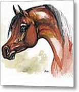 The Bay Arabian Horse 15 Metal Print