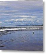 The Beach At Seaside Metal Print
