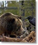 The Bear And Crow Metal Print