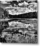 The Beautiful Fly Pond On Rondaxe Road - Old Forge Ny Metal Print by David Patterson