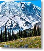 The Beautiful Mount Rainier At Sunrise Park Metal Print