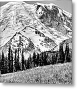 The Beautiful Mount Rainier At Sunrise Park - Washington State Metal Print