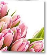 The Beautiful Purple Tulips Metal Print by Boon Mee