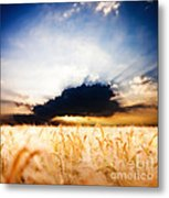 The Beautiful Sunset Metal Print