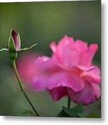 The Beauty And The Promise Metal Print