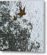 The Beauty Of Autumn Rains - A Vertical View Metal Print