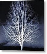 The Beauty Of Maple Hill Metal Print