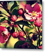 The Bee And The Blossom Metal Print