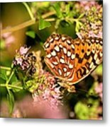 The Bee And The Butterfly Metal Print