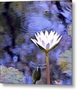 The Bee And The Dragonfly Metal Print