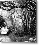 The Bend In The Road Bw Metal Print