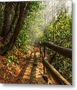 The Benton Trail Metal Print