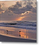 The Best Kept Secret Metal Print