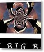 The Big Bang - Creation Of The Universe Metal Print