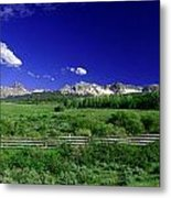 The Big Picture Metal Print