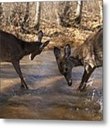 The Bill And Mike Show Metal Print