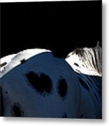 The Black And The Light Metal Print