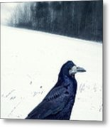 The Black Crow Knows Metal Print