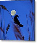 The Blackbird And The Moon Metal Print