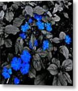 The Blue And Grey Metal Print