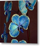 The Blue Orchid Metal Print