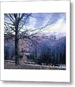 The Blue Trees Metal Print