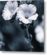 The Blues Metal Print