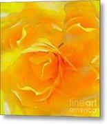 The Blushing Yellow Rose Abstract 2 Metal Print