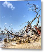 The Bottle Tree Metal Print