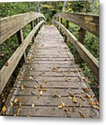 The Bridge At Rough Ridge Metal Print