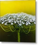 The Bright Side Of Life Metal Print
