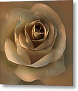 The Bronze Rose Flower Metal Print