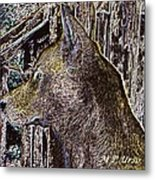 The Bronze Wolf Metal Print
