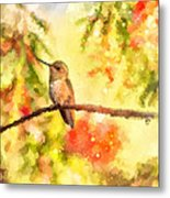 The Bubbly World Of A Hummingbird Metal Print