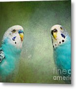 The Budgie Collection - Budgie Pair Metal Print