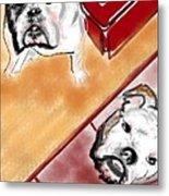 The Bulldogs Metal Print