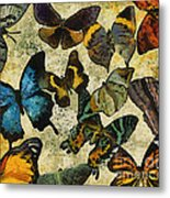 The Butterfly Collection #1 Metal Print