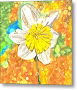 The Buzzing Life Of A Spring Narcissus Metal Print