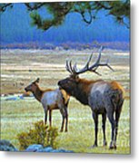 The Call Metal Print