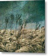 The Calm In The Storm II Metal Print