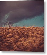The Calm In The Storm Metal Print
