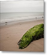The Calm Metal Print by Michael Murphy