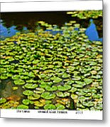 The Canal Metal Print