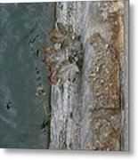 The Canal Water Metal Print