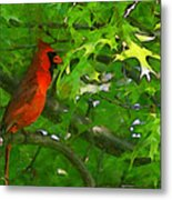 The Cardinal 2 Painterly Metal Print