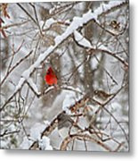 The Cardinal Rules Metal Print
